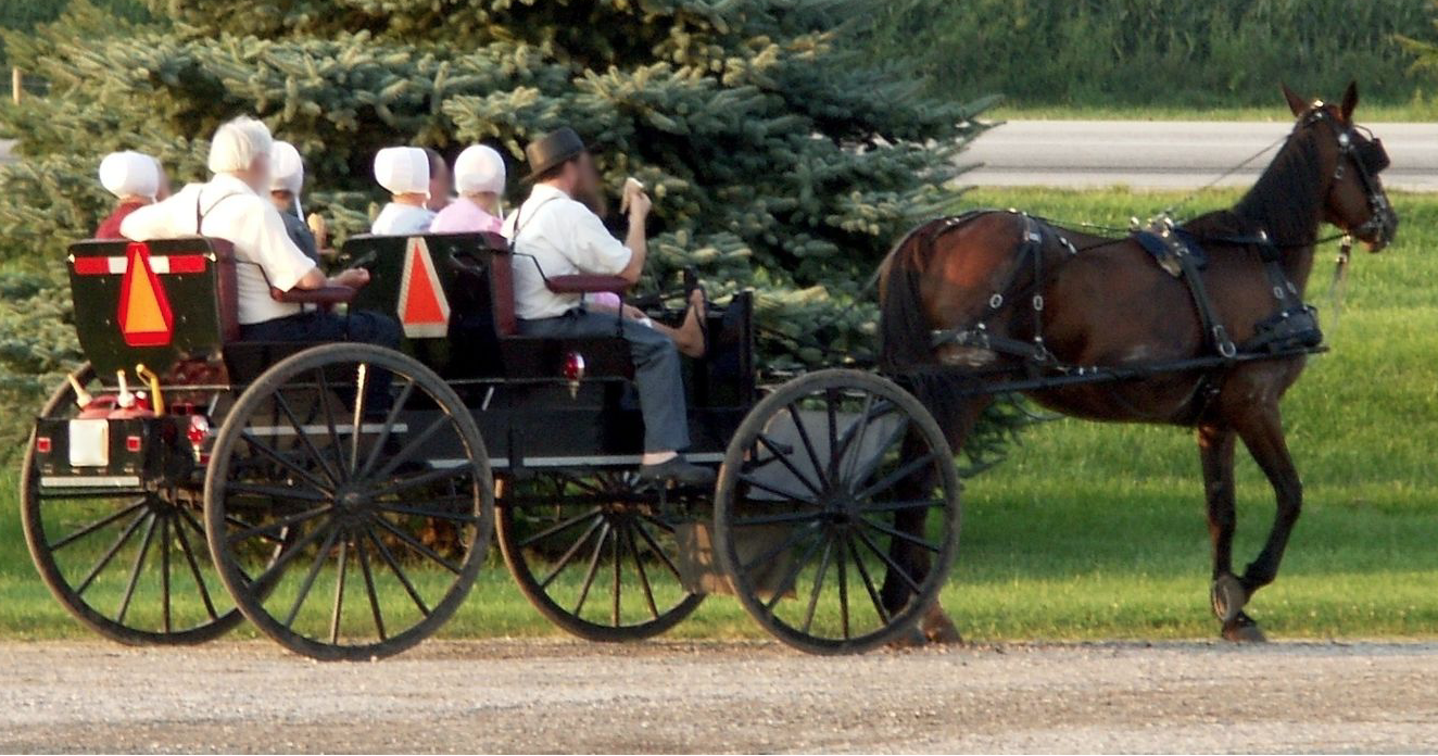 Amish People in der traditionellen Kutsche - wikimedia