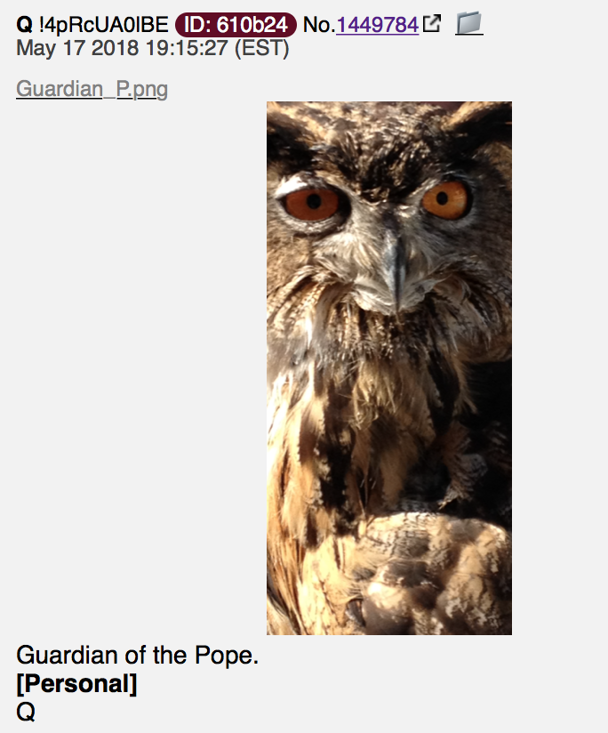 OWL guardian of the pope Foto qanon.pub