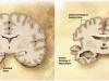 Alzheimer's_disease_brain_comparison CC BY-SA wikipedia