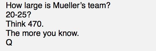 Muellers Team besteht aus 470 Mitarbeitern Foto qanon.pub