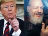 Donald Trump and Julian Assange