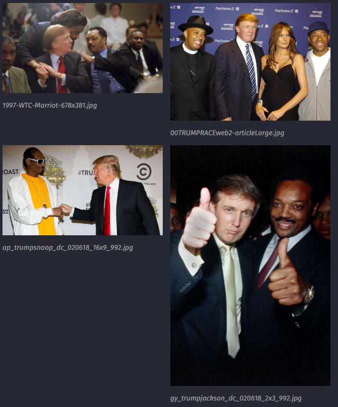 3437 QAnon Trump ist kein Rassist